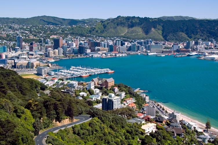 Wellington City Council Going Solar Solarking Co Nz