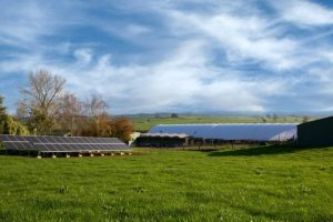 Rural Solar- Solar Array